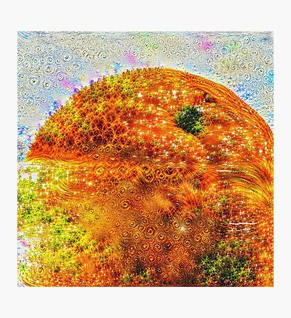 #DeepDreamed Frozen Orange Photographic Print