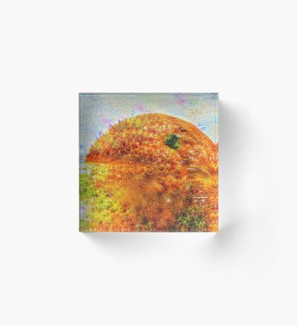 #DeepDreamed Frozen Orange Acrylic Block