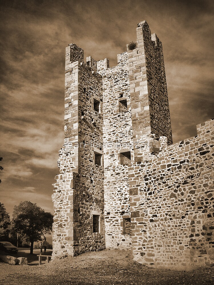 Ruins of Hyeres Castle... by jean-louis bouzou