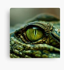 Eye of the Crocodile [iPad / Phone cases / Prints / Decor] Canvas Print