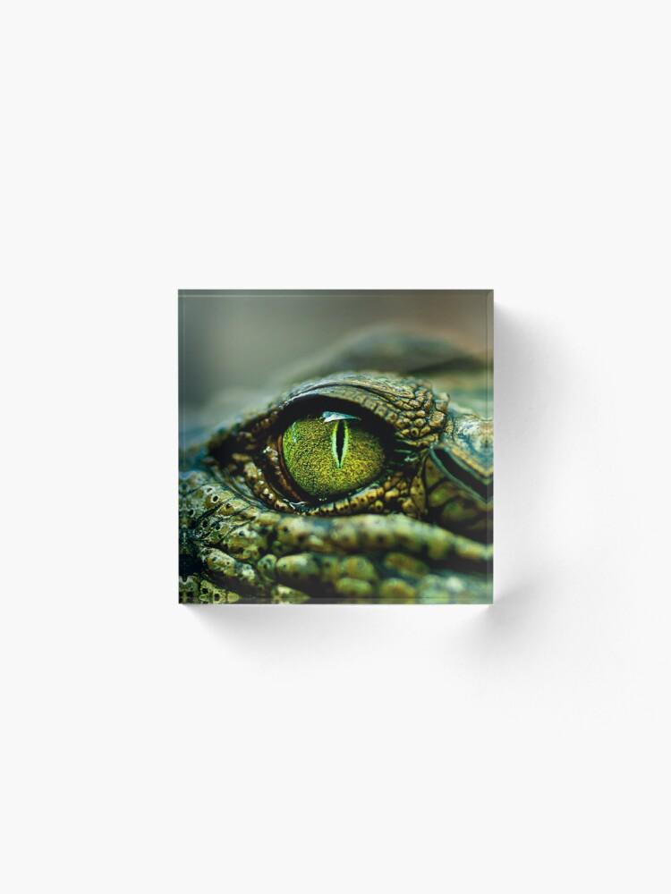 Vista alternativa de Bloque acrílico Ojo del cocodrilo [iPad / Estuches para teléfono / Impresiones / Decoración]
