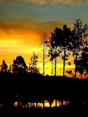 Sunset over Modderfontein by Tugela