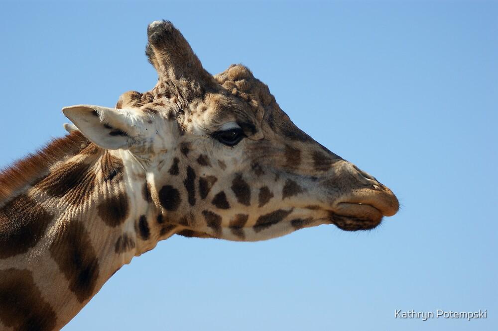 Splendour of the Giraffe  by Kathryn Potempski