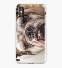 Fabulous Bulldog iPhone Case/Skin