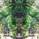 Northcote Community Gardens Fantasy 3 by Northcote Community  Gardens