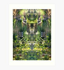 Northcote Community Gardens 12 Art Print