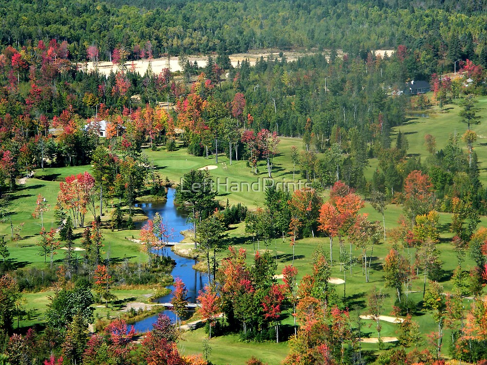 Algonquin Park Golf Course by LeftHandPrints