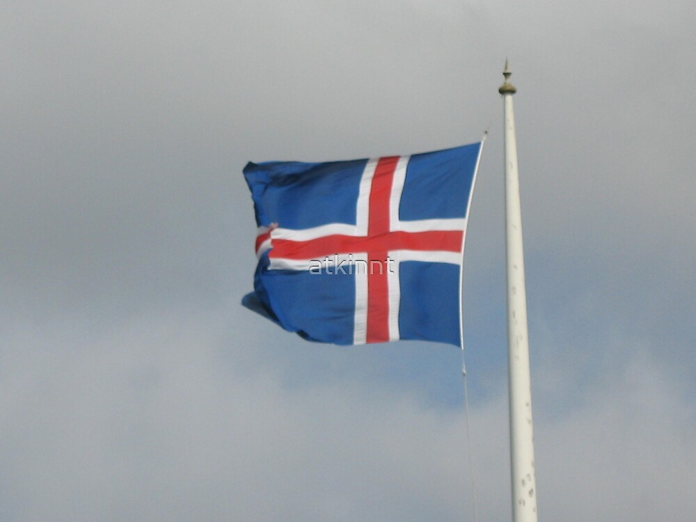 Iceland Flag by atkinnt