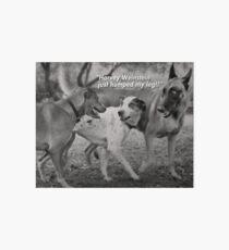 Harvey Weinstein's Animal Instincts. Art Board