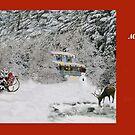 Christmas Hideaway   by Ilunia Felczer