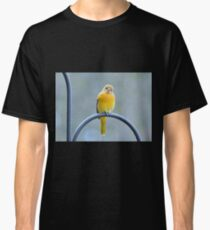 """""""here's lookin' at you!..."""" Classic T-Shirt"""
