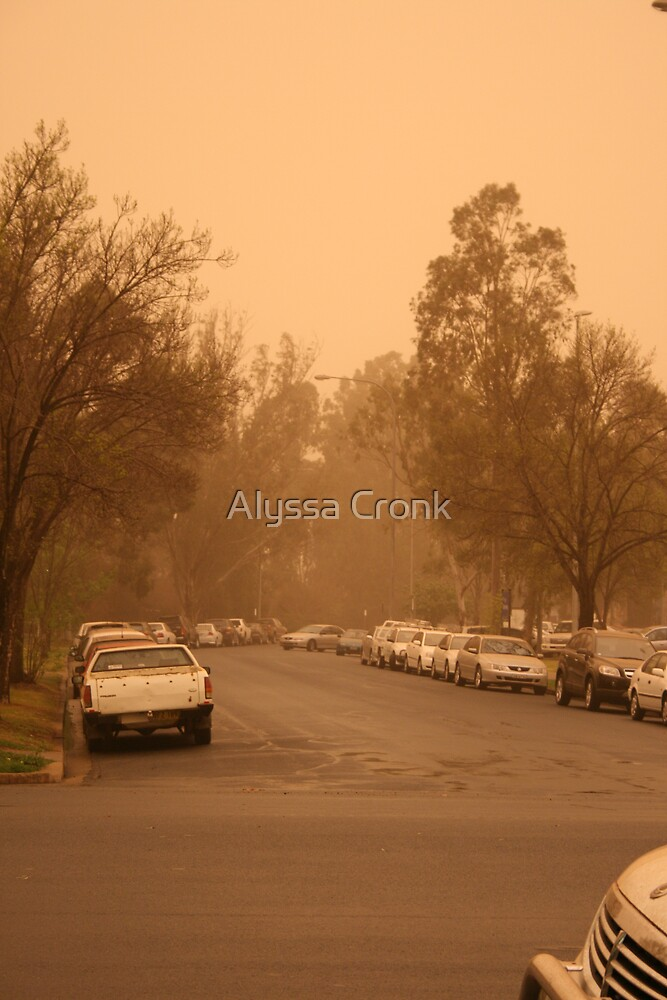 Dust Storm by Alyssa Passlow
