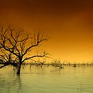 Menindee Lake by czardases