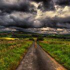 Farm Track by Nigel Bangert