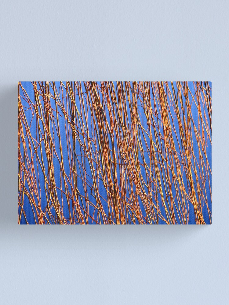 Alternate view of Reeds Canvas Print