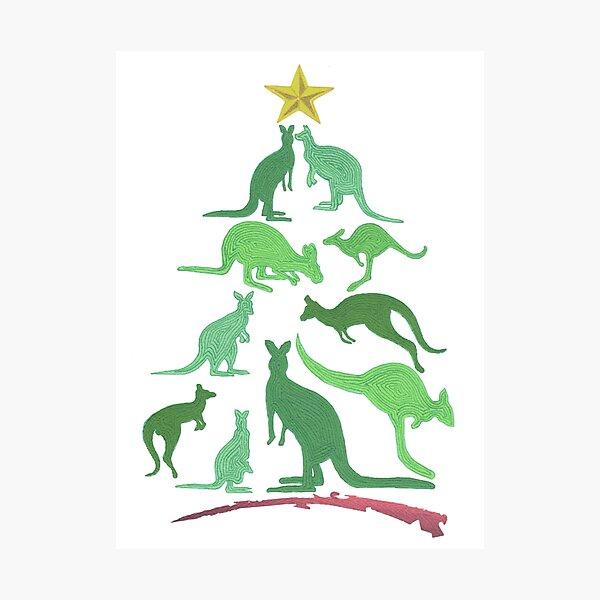 Kangaroo Christmas Photographic Print