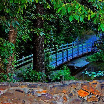 Serene by ArkansasLisa