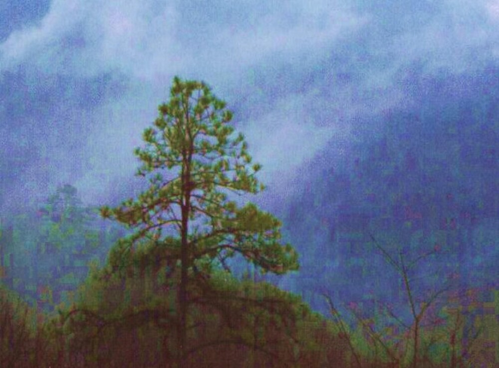 Painted Cumberland by Marie Monroe