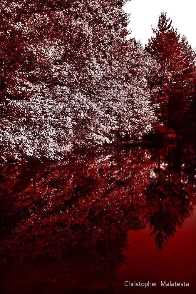 September Red by Christopher  Malatesta