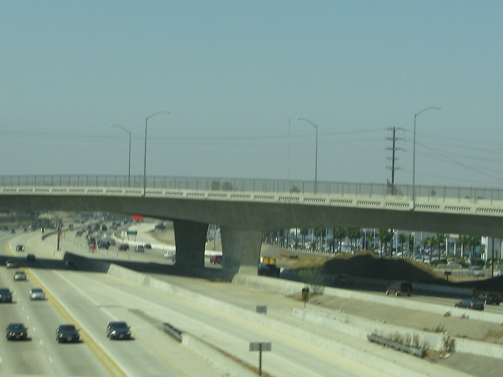 Southern California lovely freeway I-5 by sunniray41