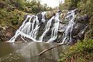 Unnamed Waterfall Strzelecki Ranges by Travis Easton