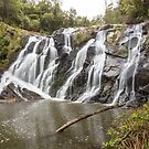 Unnamed Waterfall Strzelecki Ranges by Travis Easton