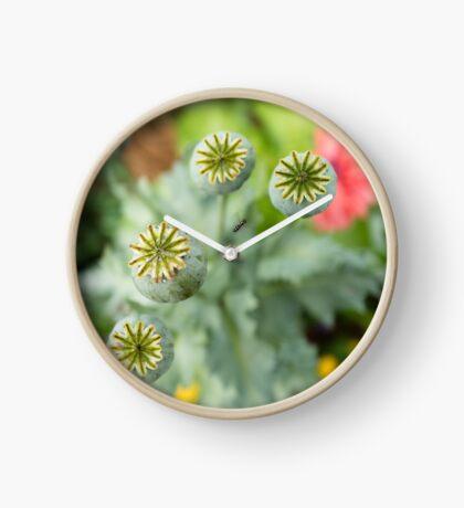 Patterns in Poppy Pods Clock