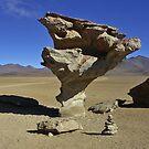 Strange rocks - Bolivia by Christophe Dur