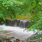 Chasing Waterfalls by Jenn Ridley