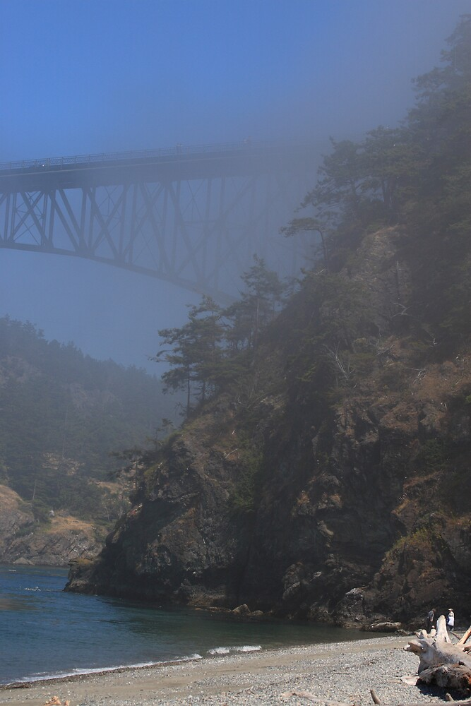 A FOGGY DAY AT DECEPTION PASS by MsLiz