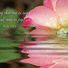 Psalm 126:5 by Jonicool