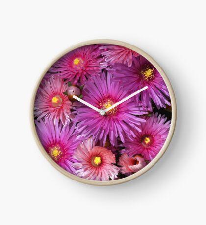 Beautiful Pink Pigface Flowers Clock