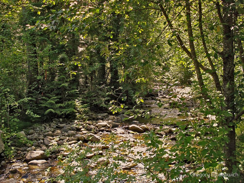 K.L.O. Creek by Gregory Ewanowich