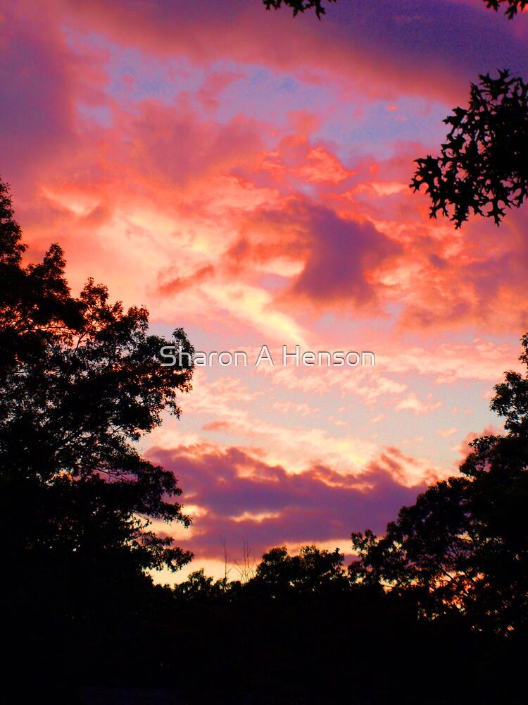 LAST SUMMER SUNSET  08 by Sharon A. Henson