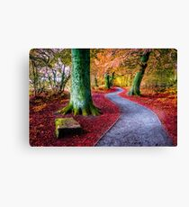 Autumn woodland trail Canvas Print