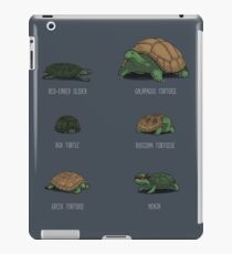 Know Your Turtles iPad Case/Skin