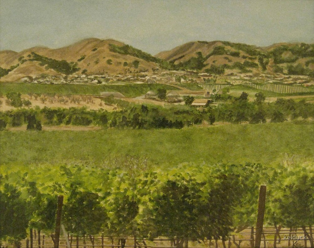 Livermore Valley by kelduck