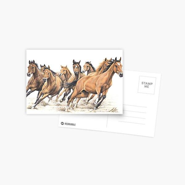 Trakehner Horses Postcard