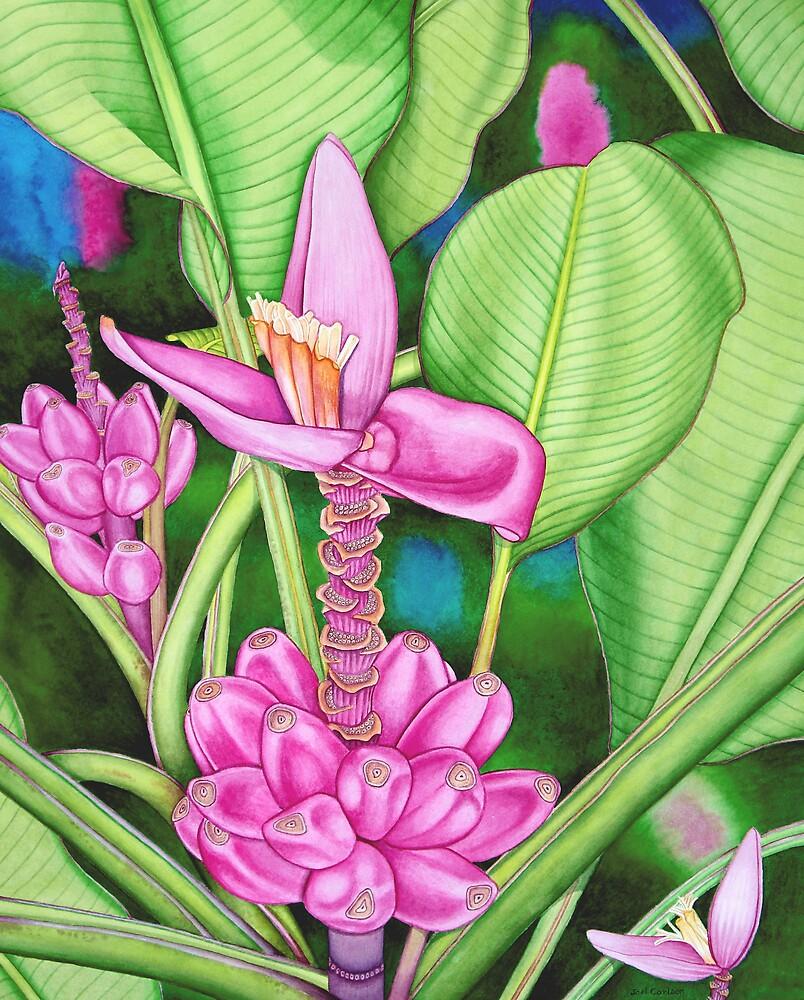 Pink Bananas by joeyartist