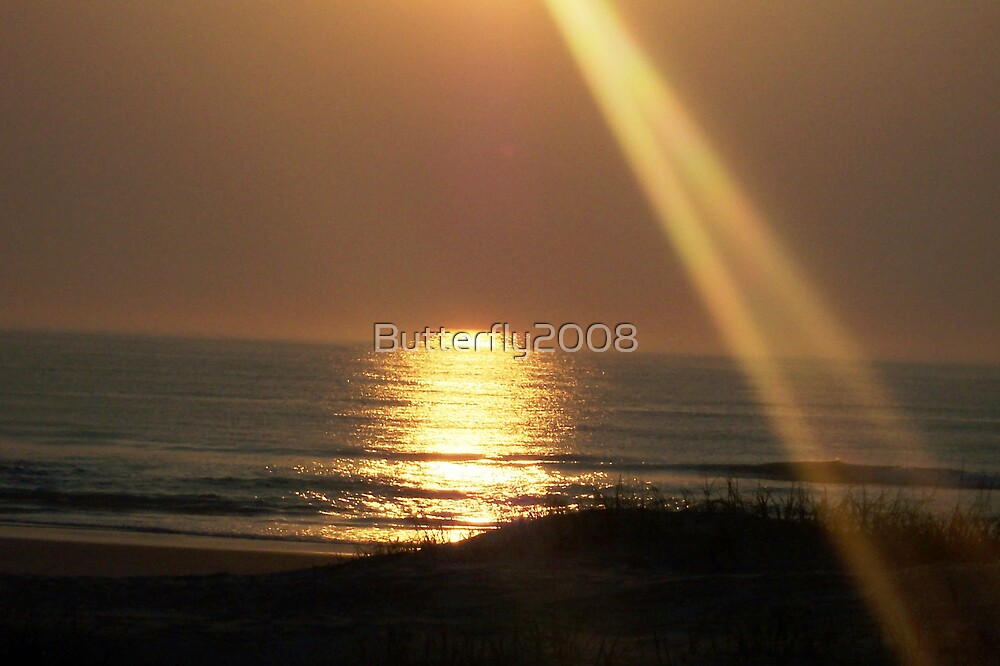 Sunbeam Reflection  by Butterfly2008