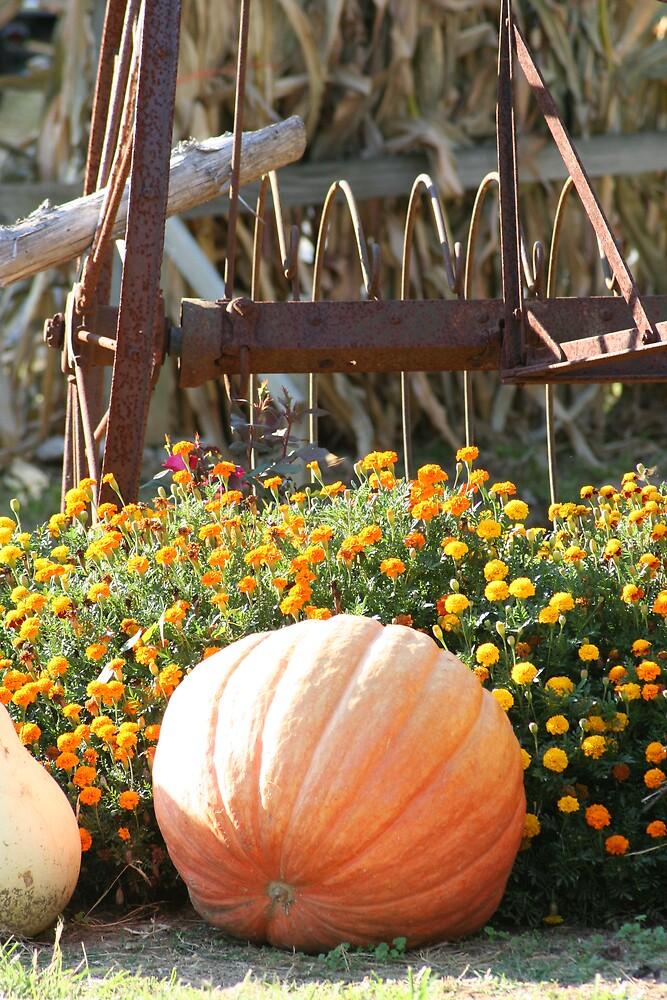 Fall is here!!!! by Lori Walton