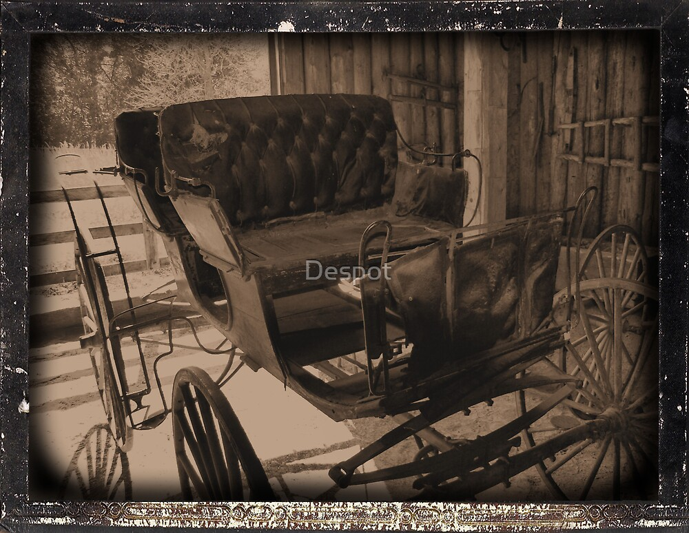 The Wagon by Despot