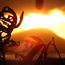 Diamond Head Sunrise by Patrick Czaplewski