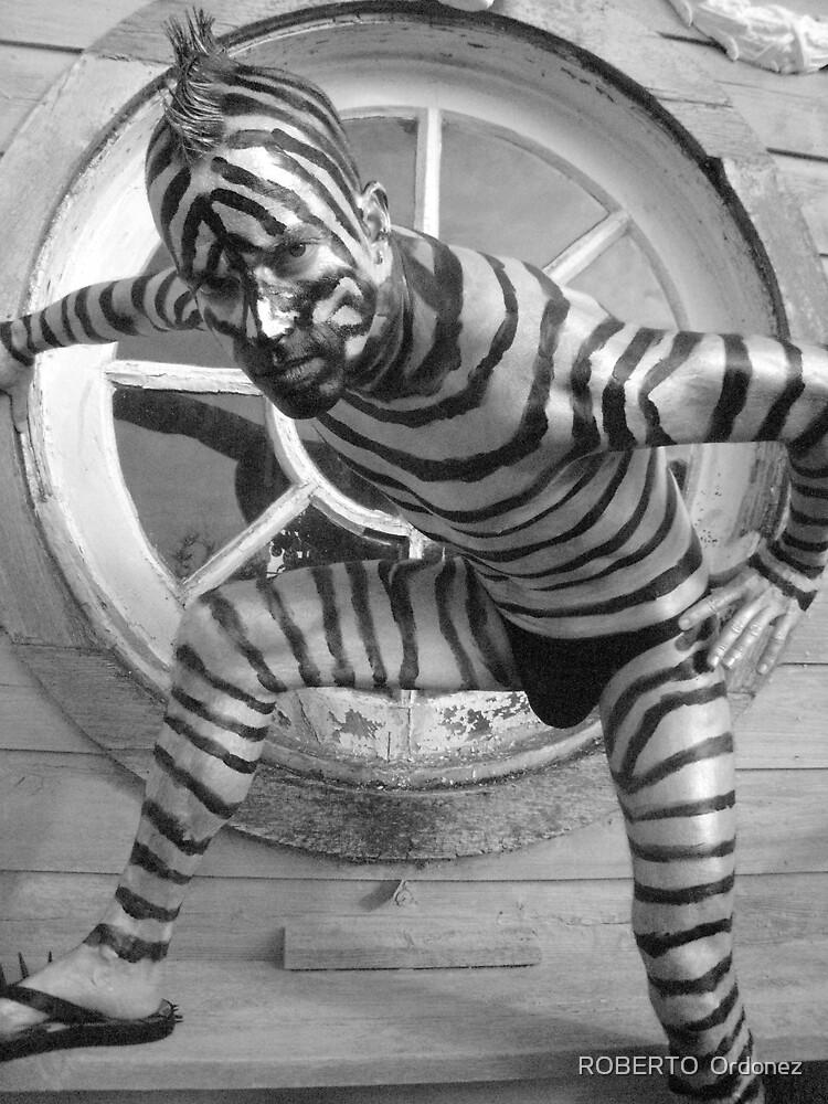 zebra guy 2 by Robert Ordonez