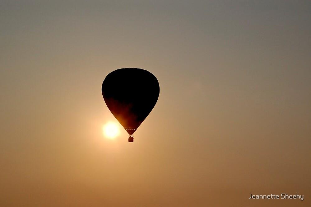 Freedom Flight by Jeannette Sheehy