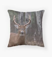 White-tailed buck in the forest Throw Pillow