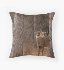 White-tailed deer in the forest Throw Pillow