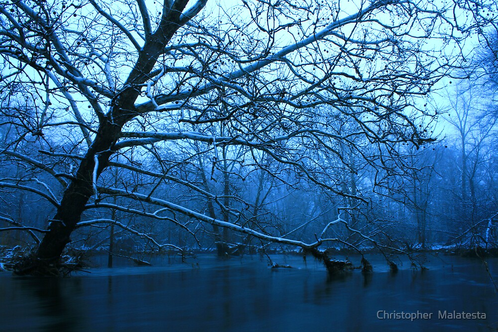 Cold River by Christopher  Malatesta