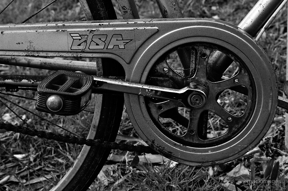 BSA by mackimages