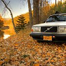 Leafy Volvo 240 by Bailey Sampson